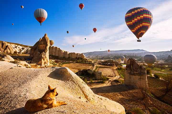 Morning Cappadocia Balloons