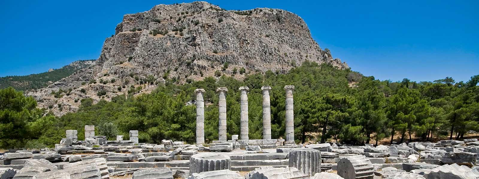Priene & Miletus & Didyma Tour