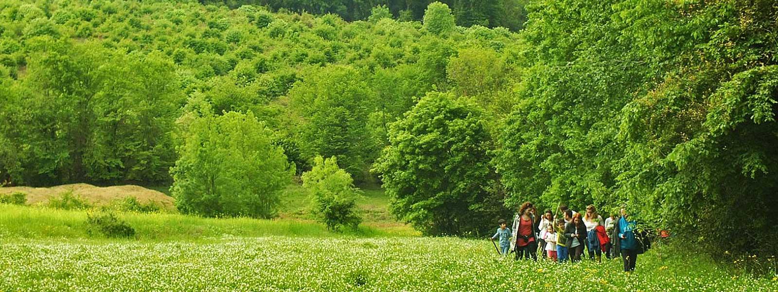 Sustainable Tourism Development Turkey