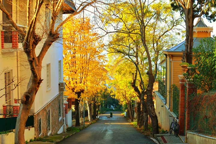 Princes Island Mansions in Autumn