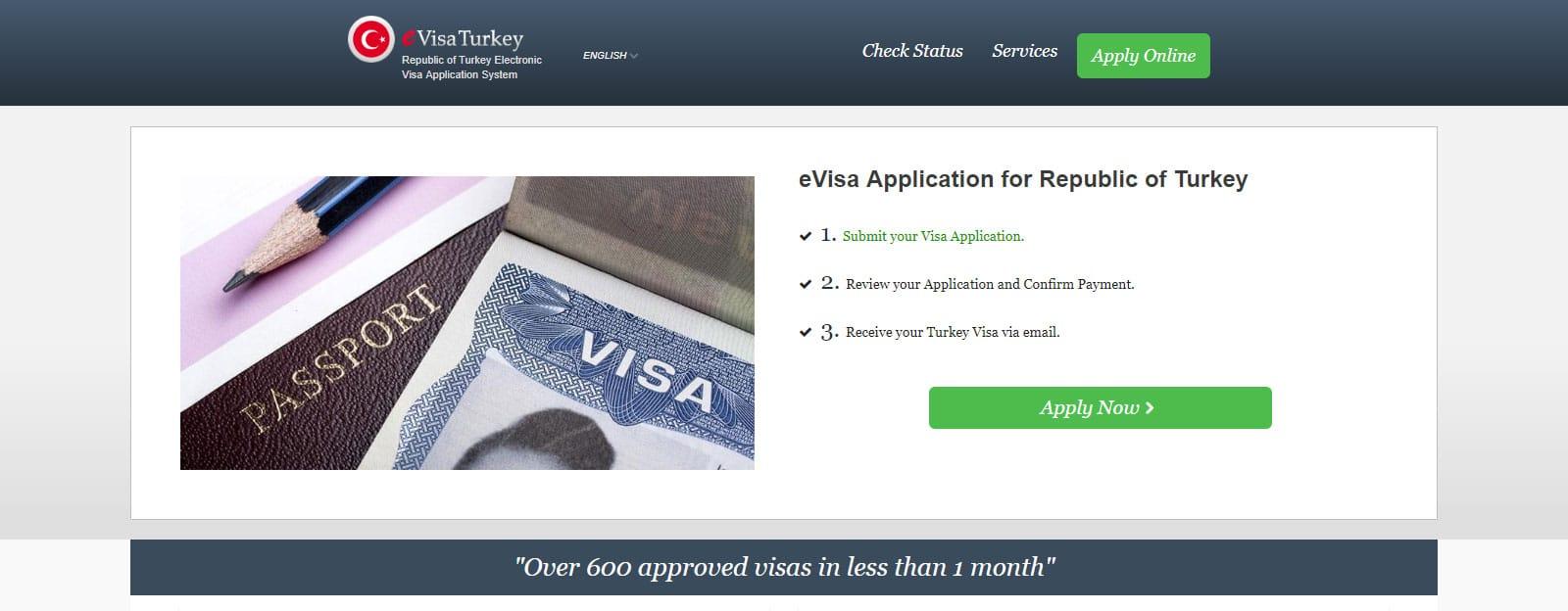 Scam E-Visa Site