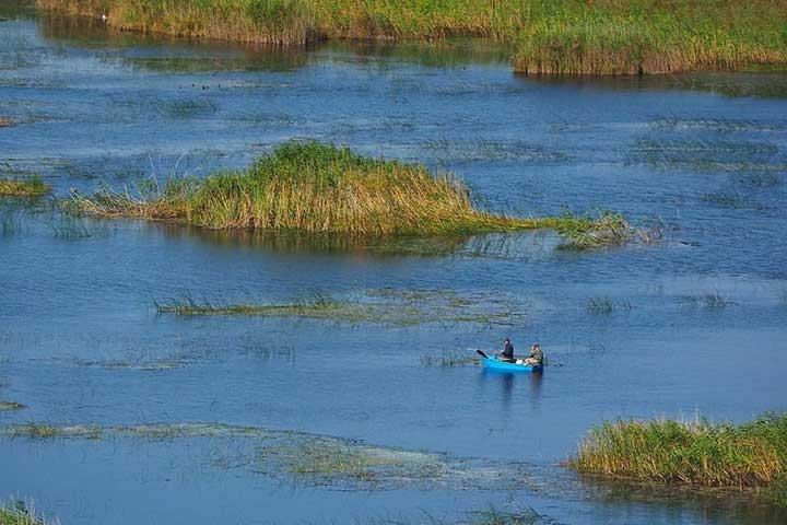 Boat Ride Marsh Turkey
